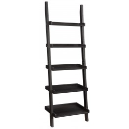 800338 Ladder Bookcase
