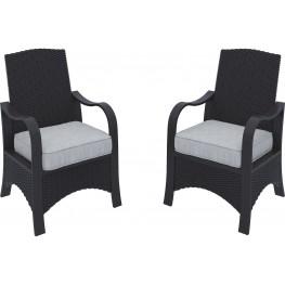 Marsh Creek Brown Chair with Cushion Set of 2